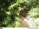 Fern Valley Mass Movements Up-Stream 5/19/2012