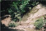 Rathburn Run shale bed 1(2), 04-2011