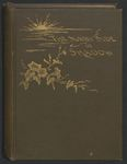 The Sunny Side of Shadow: Reveries of a Convalescent by Fannie Nichols Benjamin